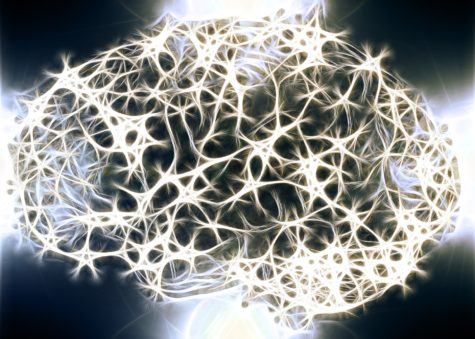 Study: Could Discovery Of Brain Protein Solve Mystery Of OCD Cause?