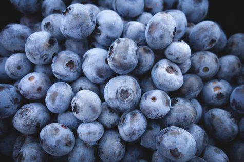 Study: Blueberry Juice Improves Memory, Cognitive Functions In Seniors
