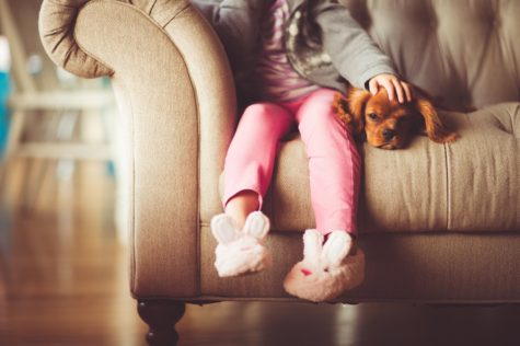"a new study finds that ""man's best friends"" offer a very therapeutic role for stressed children."