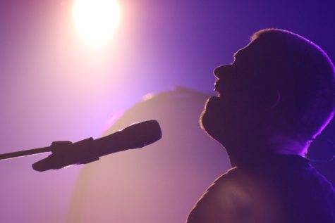 Man singing at concert