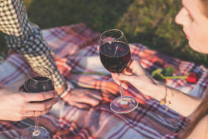 People drinking wine at picnic