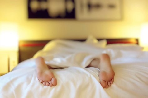 Deep Sleep Plays Central Role In Our Ability To Learn, Study Finds