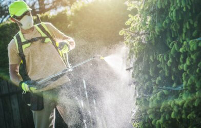 Landscaper or lawn care worker spraying pesticide