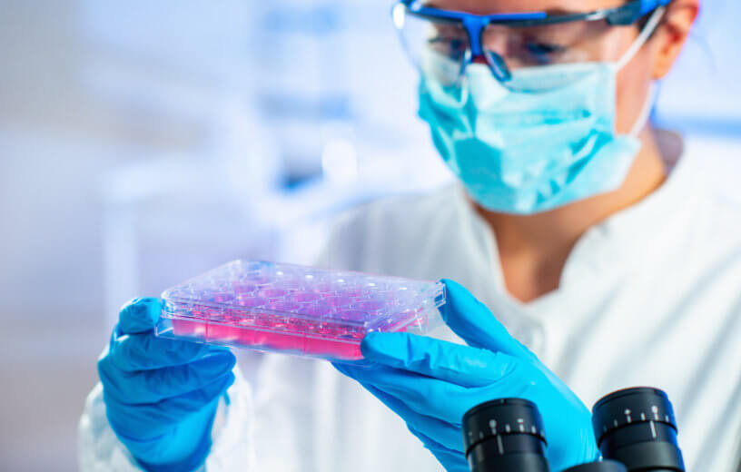 Stem cell lab researcher