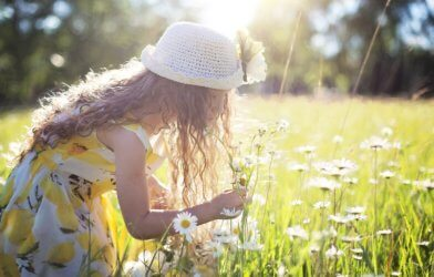 Little girl picking daisies