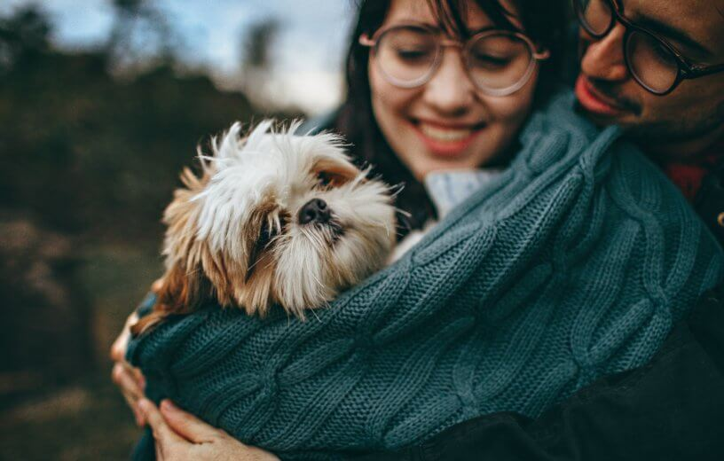Couple hugging with a dog