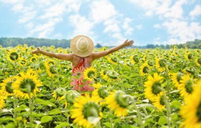 Happy woman with arms wide open in field of sunflowers