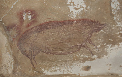 Ancient pig painting found in cave