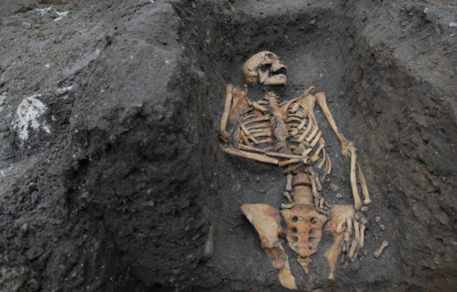 Skeletal remains of friar unearthed