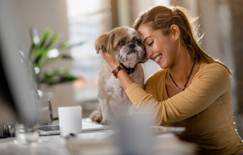 Woman hugging dog in office