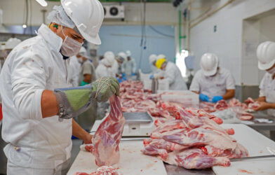 Meatpacking plant - meat factory workers