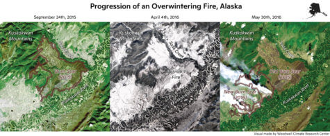 Zombie fires fueled by climate change
