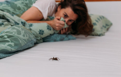 Woman scared of spider in her bed