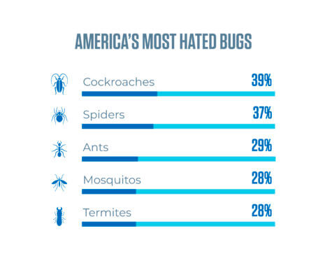 Hated Bugs