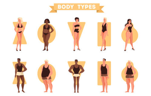 Body shapes and types